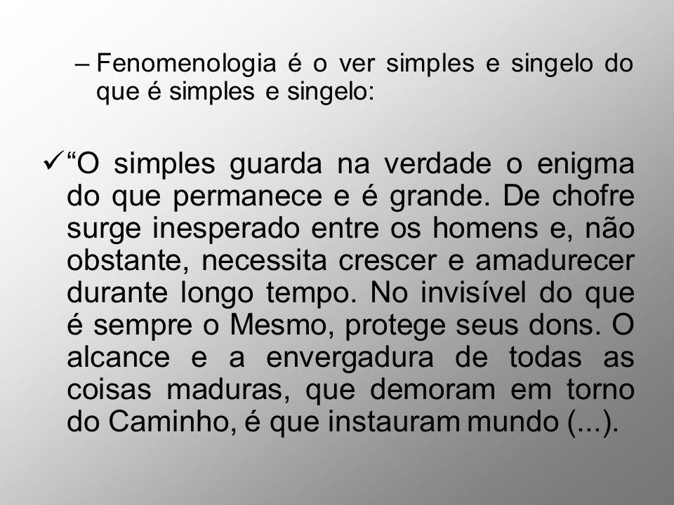 –Fenomenologia é o ver simples e singelo do que é simples e singelo: O simples guarda na verdade o enigma do que permanece e é grande. De chofre surge