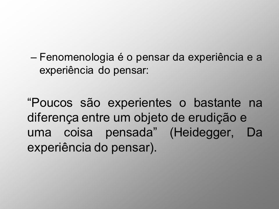 –Fenomenologia é o pensar da experiência e a experiência do pensar: Poucos são experientes o bastante na diferença entre um objeto de erudiçãoe uma co