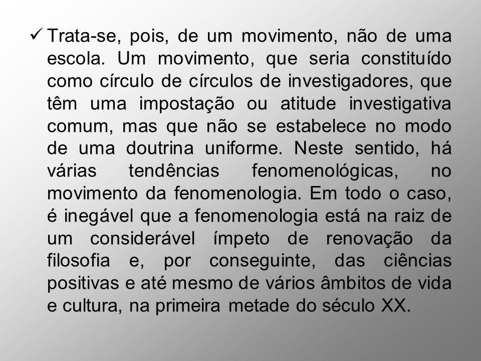 Esta apreensão da fenomenologia como movimento é correta.