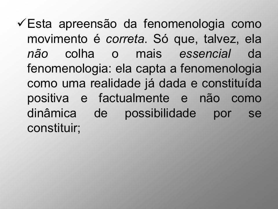 Esta apreensão da fenomenologia como movimento é correta. Só que, talvez, ela não colha o mais essencial da fenomenologia: ela capta a fenomenologia c
