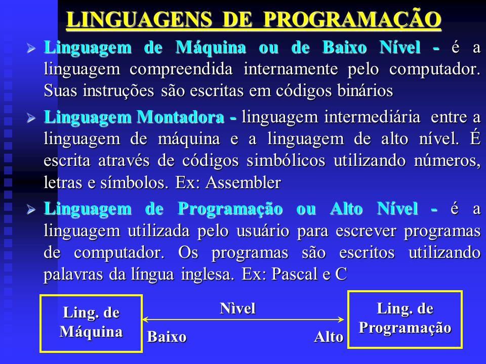 LINGUAGENS DE PROGRAMAÇÃO Linguagem de Máquina ou de Baixo Nível - é a linguagem compreendida internamente pelo computador. Suas instruções são escrit