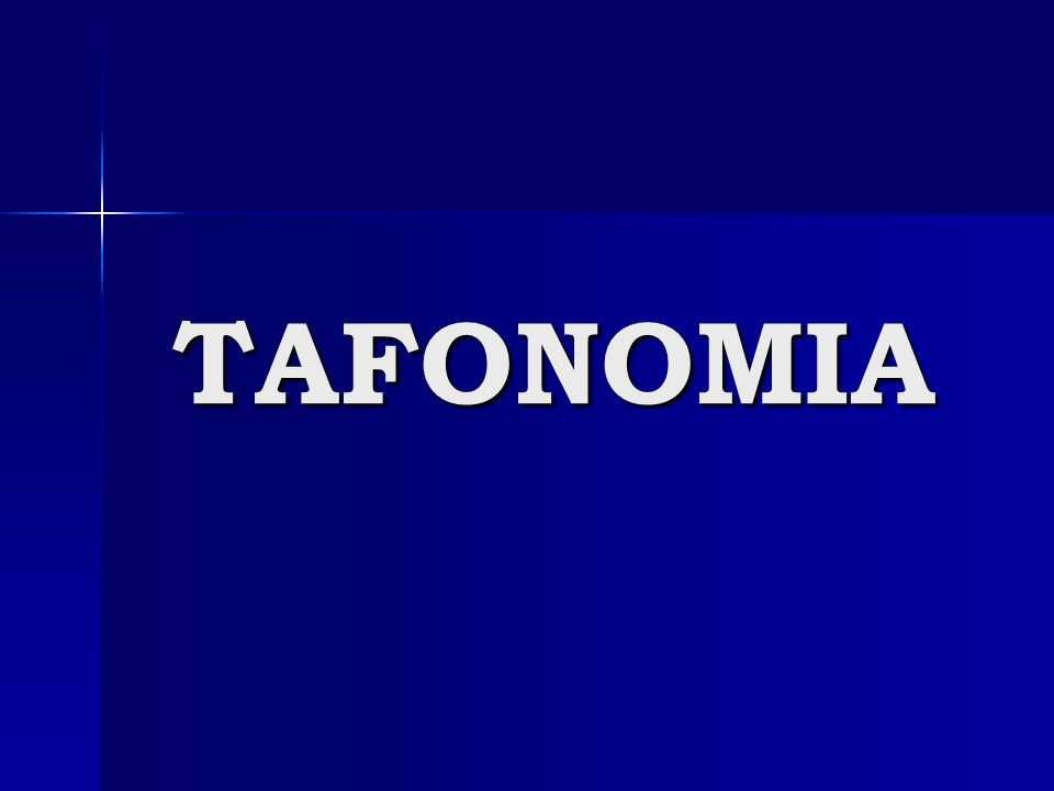 TAFONOMIA