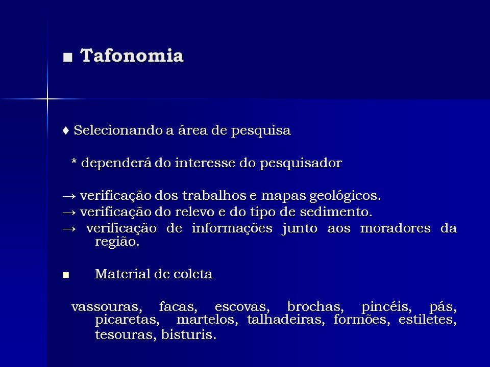 Tafonomia Tafonomia Selecionando a área de pesquisa Selecionando a área de pesquisa * dependerá do interesse do pesquisador * dependerá do interesse d