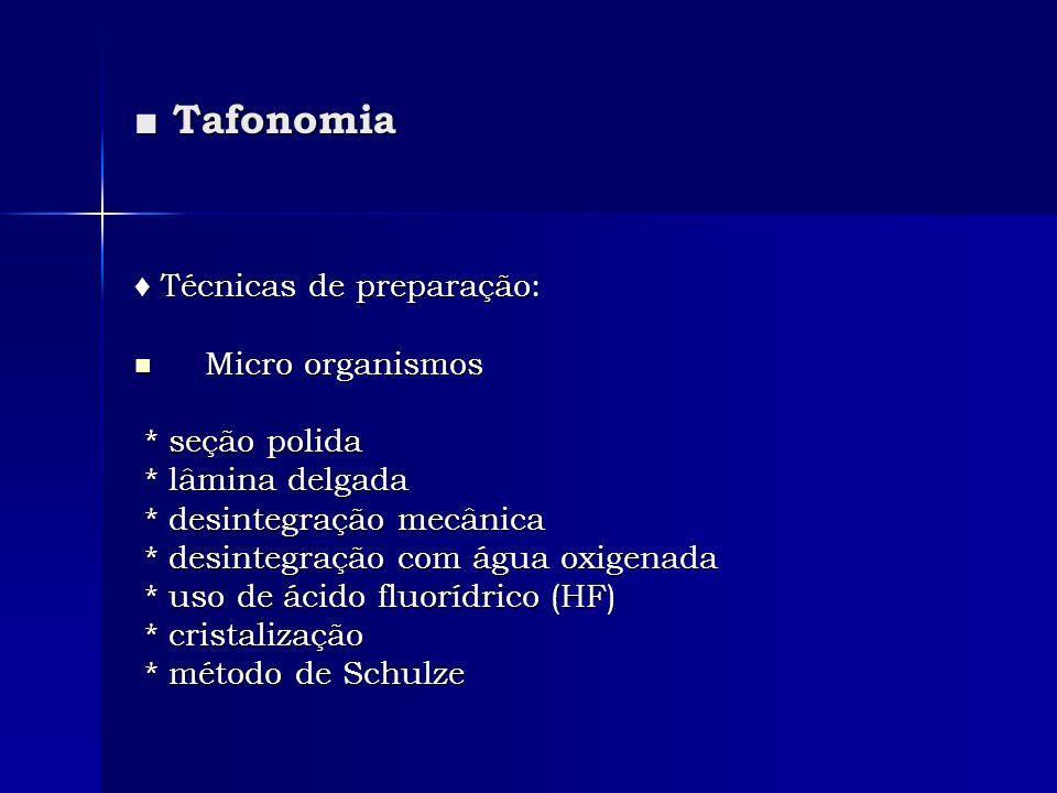 Tafonomia Tafonomia Técnicas de preparação: Técnicas de preparação: Micro organismos Micro organismos * seção polida * seção polida * lâmina delgada *