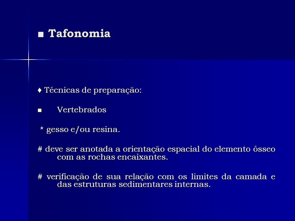 Tafonomia Tafonomia Técnicas de preparação: Técnicas de preparação: Vertebrados Vertebrados * gesso e/ou resina. * gesso e/ou resina. # deve ser anota