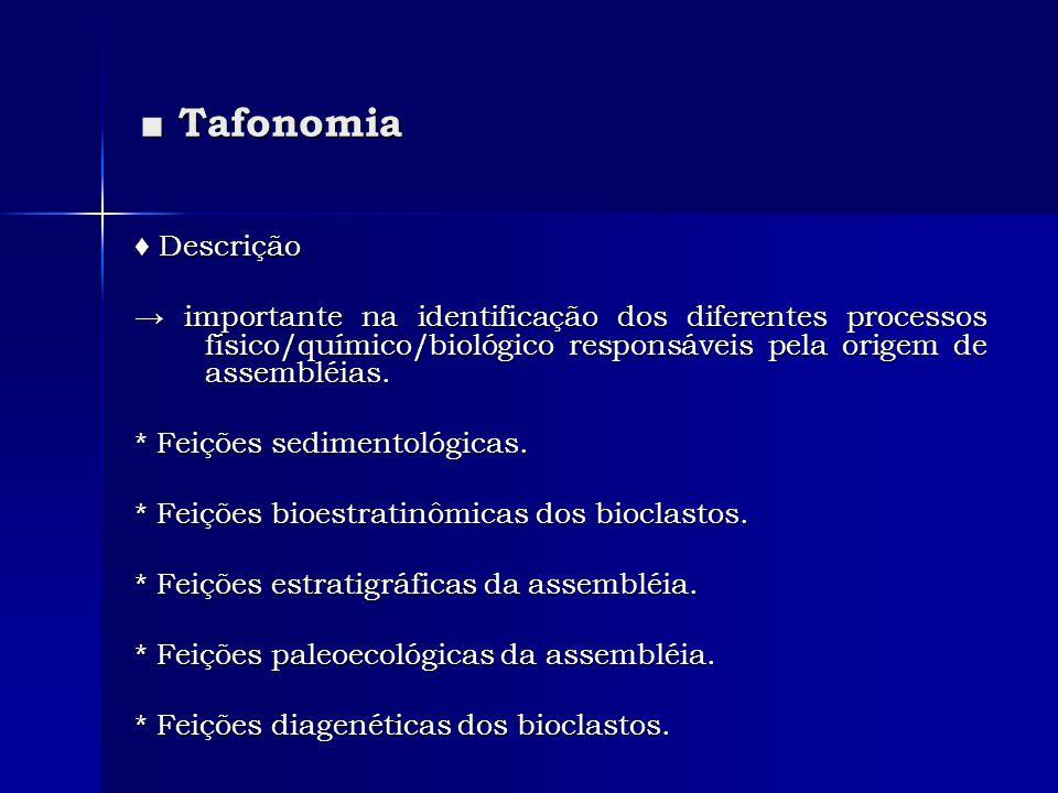Tafonomia Tafonomia Descrição Descrição importante na identificação dos diferentes processos físico/químico/biológico responsáveis pela origem de asse