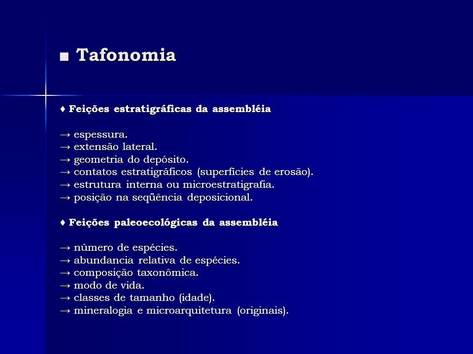 Tafonomia Tafonomia Feições estratigráficas da assembléia Feições estratigráficas da assembléia espessura. espessura. extensão lateral. extensão later