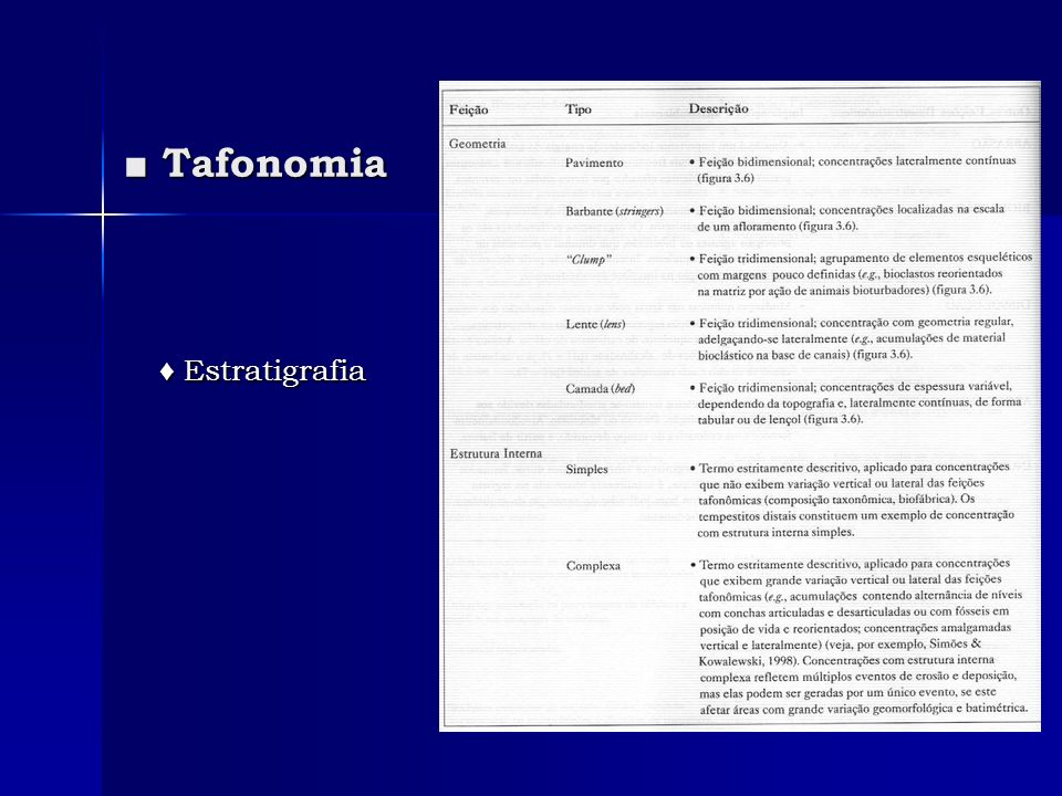 Tafonomia Tafonomia Estratigrafia Estratigrafia
