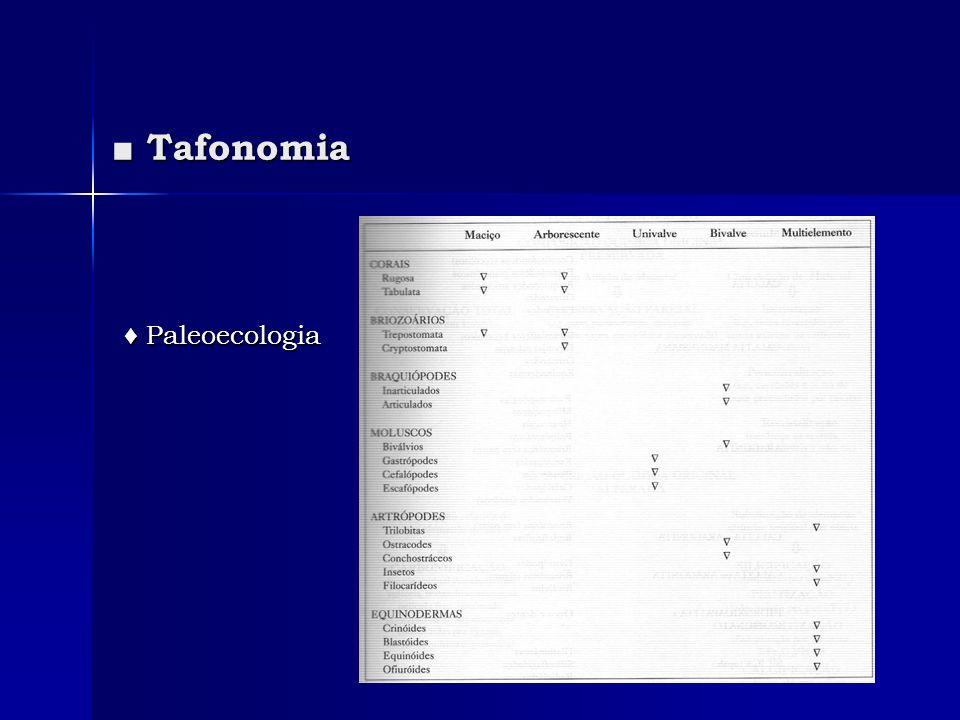 Tafonomia Tafonomia Paleoecologia Paleoecologia