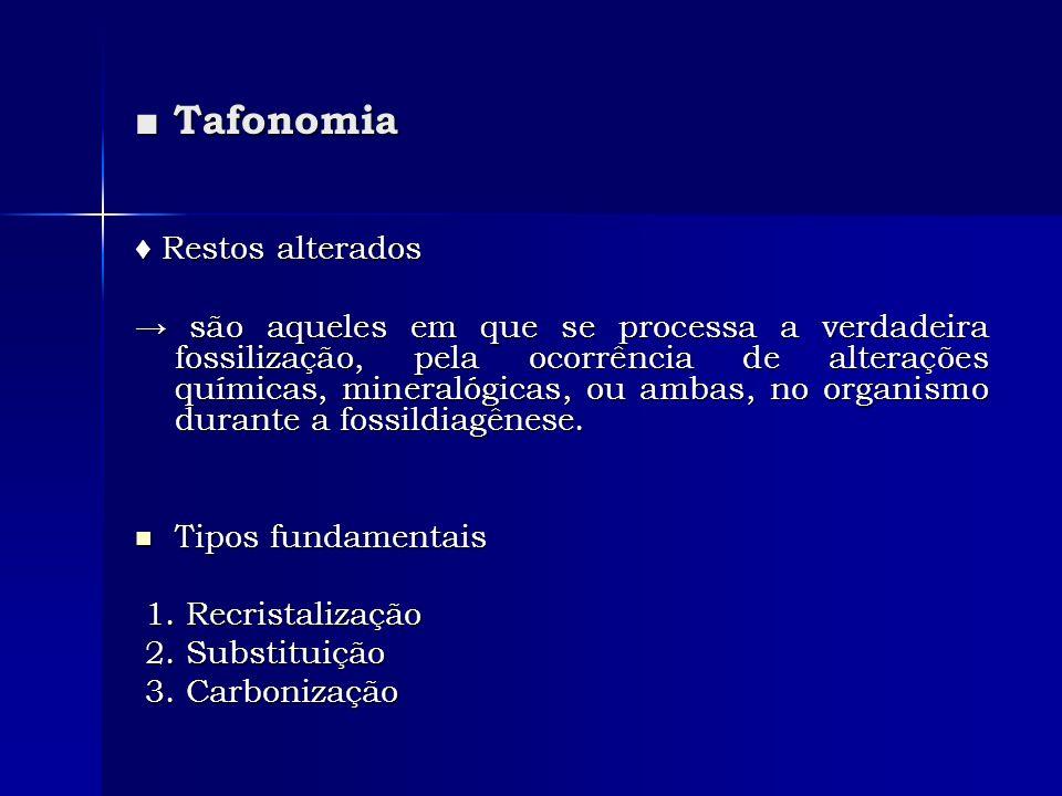 Tafonomia Tafonomia Restos alterados Restos alterados são aqueles em que se processa a verdadeira fossilização, pela ocorrência de alterações químicas