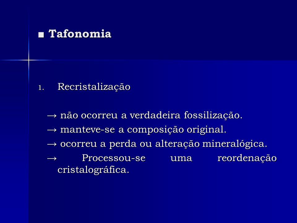 Tafonomia Tafonomia 1. Recristalização não ocorreu a verdadeira fossilização. não ocorreu a verdadeira fossilização. manteve-se a composição original.