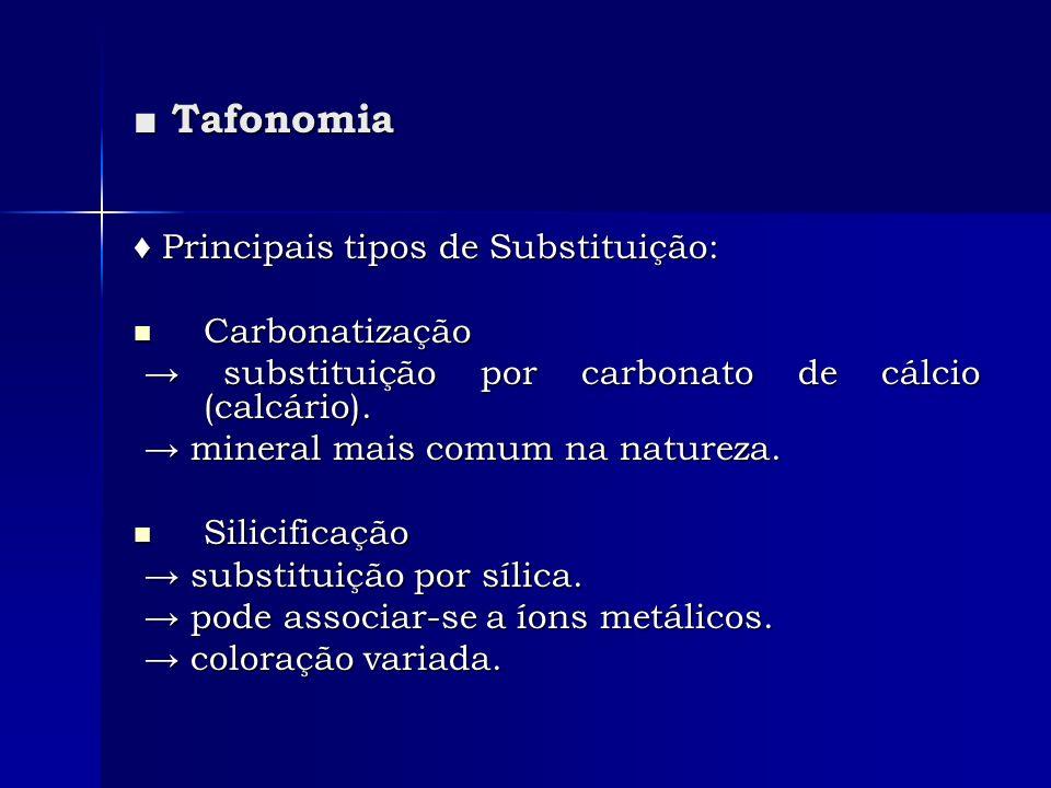 Tafonomia Tafonomia Principais tipos de Substituição: Principais tipos de Substituição: Carbonatização Carbonatização substituição por carbonato de cá