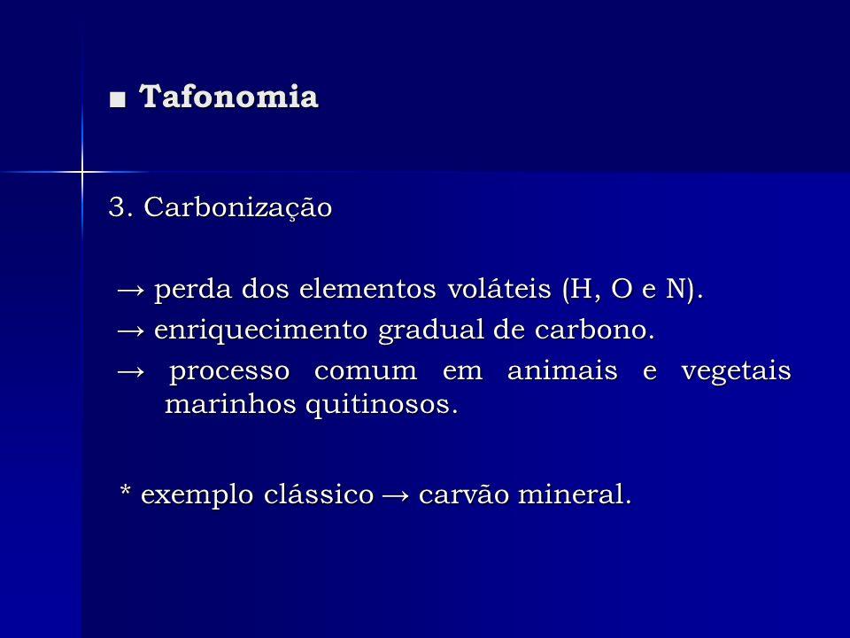 Tafonomia Tafonomia 3. Carbonização perda dos elementos voláteis (H, O e N). perda dos elementos voláteis (H, O e N). enriquecimento gradual de carbon