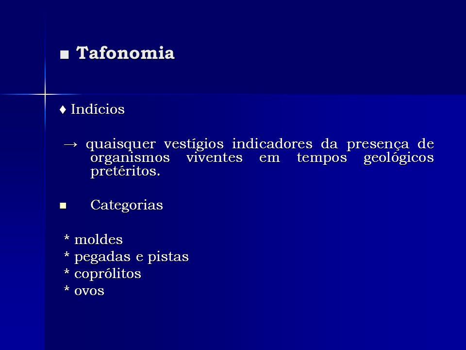 Tafonomia Tafonomia Indícios Indícios quaisquer vestígios indicadores da presença de organismos viventes em tempos geológicos pretéritos. quaisquer ve