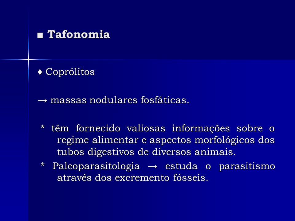 Tafonomia Tafonomia Coprólitos Coprólitos massas nodulares fosfáticas. massas nodulares fosfáticas. * têm fornecido valiosas informações sobre o regim