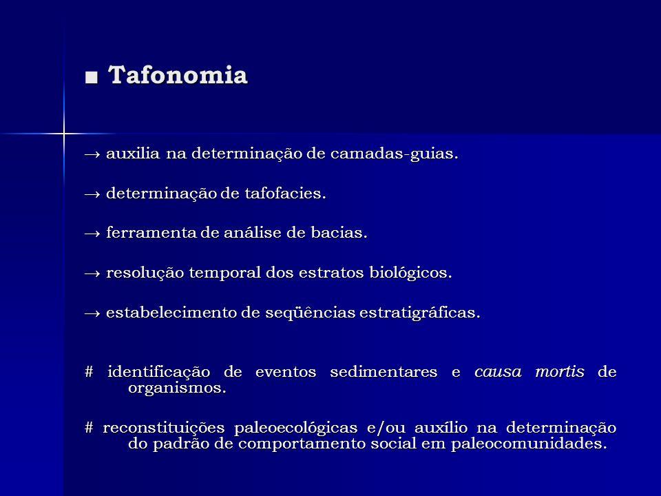 Tafonomia Tafonomia auxilia na determinação de camadas-guias. auxilia na determinação de camadas-guias. determinação de tafofacies. determinação de ta