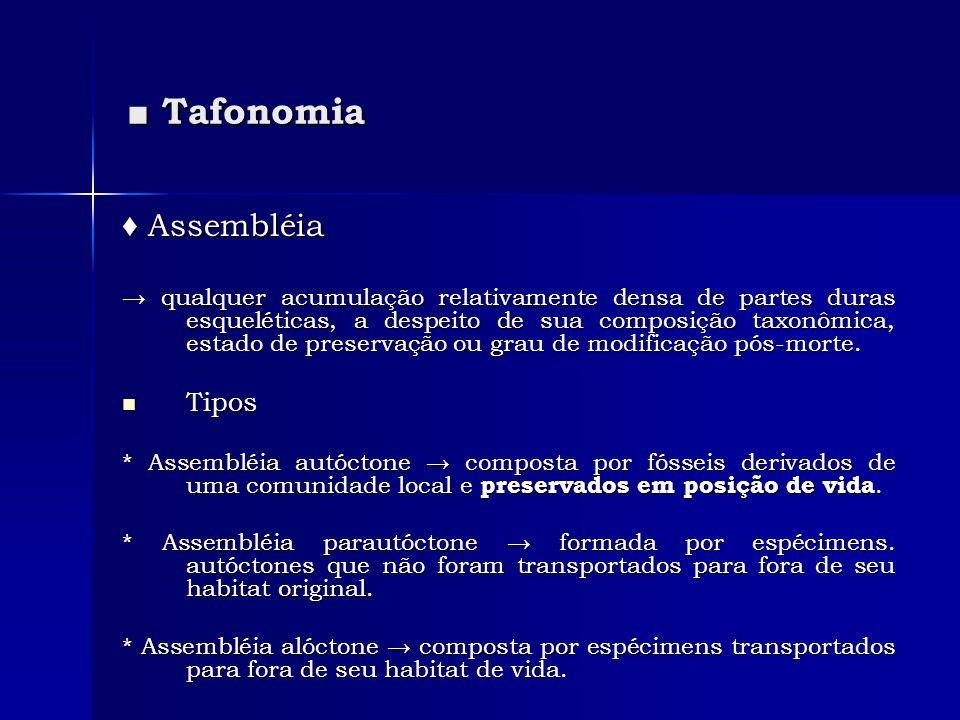 Tafonomia Tafonomia Assembléia Assembléia qualquer acumulação relativamente densa de partes duras esqueléticas, a despeito de sua composição taxonômic