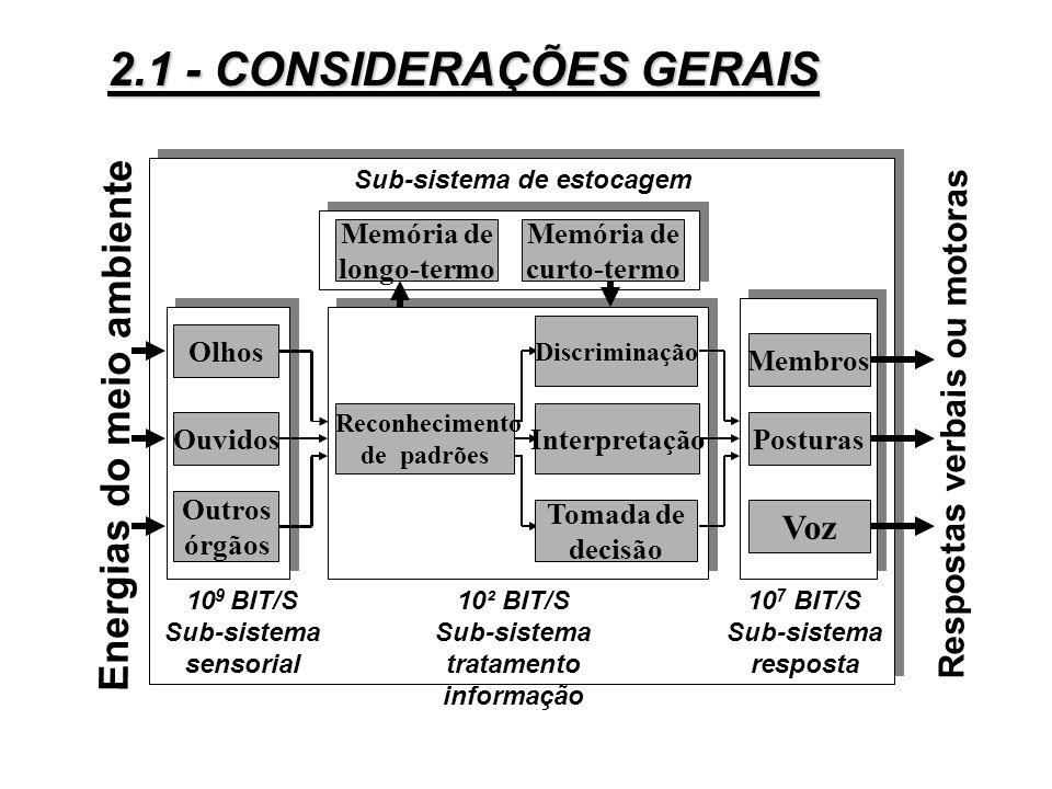 Os comportamentos do homem no trabalho podem ser estudados sob dois ângulos: 3Sistema de transformação de energia: atividades motoras (ou musculares)