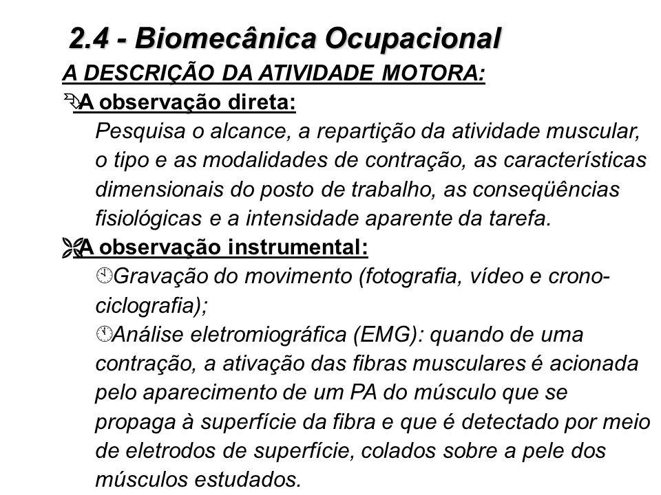 2.4 - Biomecânica Ocupacional Fisiologia do Trabalho Muscular Ë Solicitação relativa: 3Todos os sujeitos não apresentam a mesma aptidão ao trabalho mu