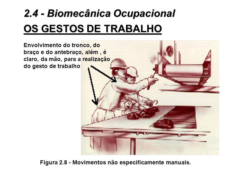 3Os movimentos não especificamente manuais: Envolvem um certo número de segmentos corporais: mobilização do ante-braço, do braço e, às vezes, de movim
