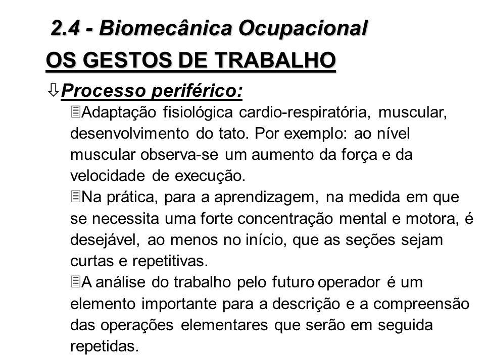 ò Processo central: 3Estabelecimento de planos de cooperação muscular, por meio da criação de vias neuro-fisiológicas particulares; 3Nota-se ao nível