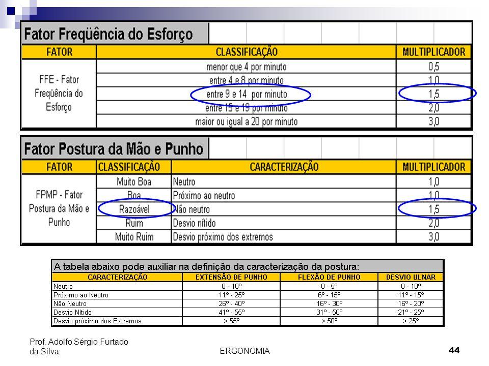 ERGONOMIA 44 Prof. Adolfo Sérgio Furtado da Silva