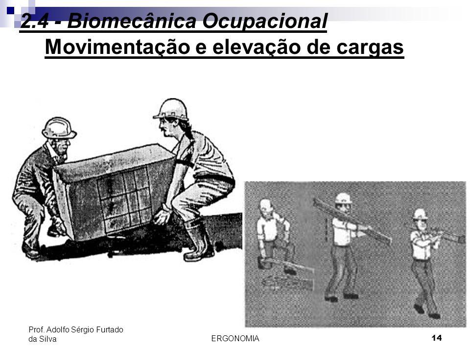 ERGONOMIA 14 Prof. Adolfo Sérgio Furtado da Silva Movimentação e elevação de cargas 2.4 - Biomecânica Ocupacional