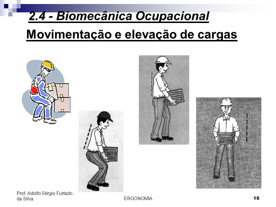 ERGONOMIA 16 Prof. Adolfo Sérgio Furtado da Silva Movimentação e elevação de cargas 2.4 - Biomecânica Ocupacional