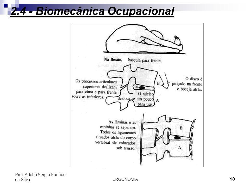 ERGONOMIA 18 Prof. Adolfo Sérgio Furtado da Silva 2.4 - Biomecânica Ocupacional