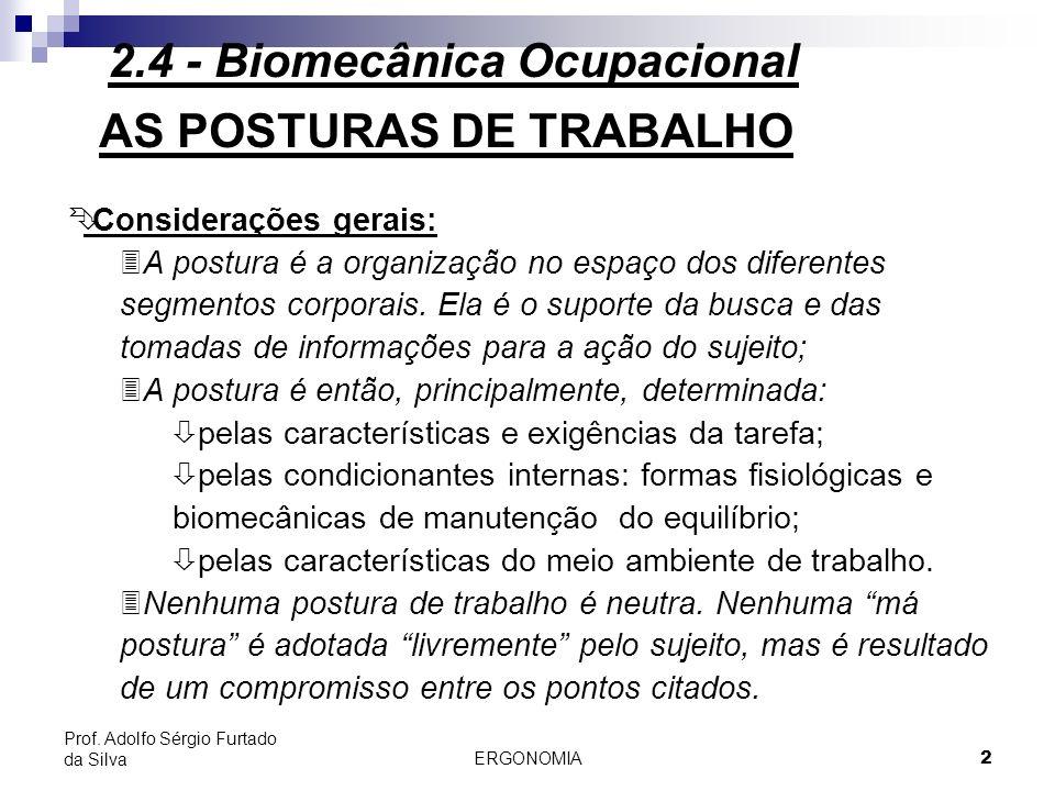 ERGONOMIA 13 Prof.