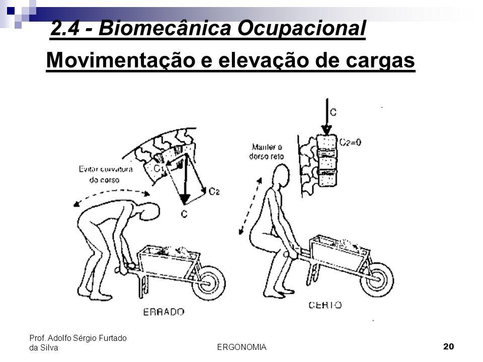 ERGONOMIA 20 Prof. Adolfo Sérgio Furtado da Silva Movimentação e elevação de cargas 2.4 - Biomecânica Ocupacional