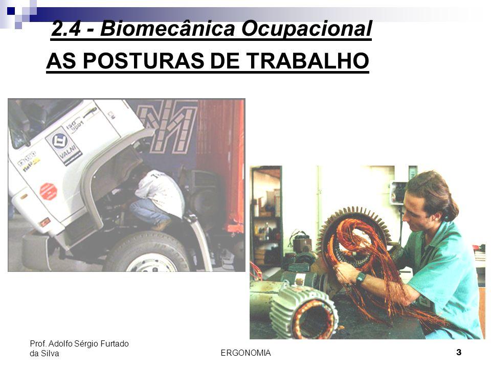 ERGONOMIA 3 Prof. Adolfo Sérgio Furtado da Silva AS POSTURAS DE TRABALHO 2.4 - Biomecânica Ocupacional