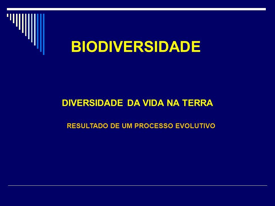 BIODIVERSIDADE DIVERSIDADE DA VIDA NA TERRA RESULTADO DE UM PROCESSO EVOLUTIVO