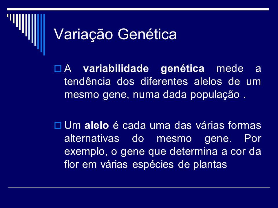 Variação Genética A variabilidade genética mede a tendência dos diferentes alelos de um mesmo gene, numa dada população. Um alelo é cada uma das vária