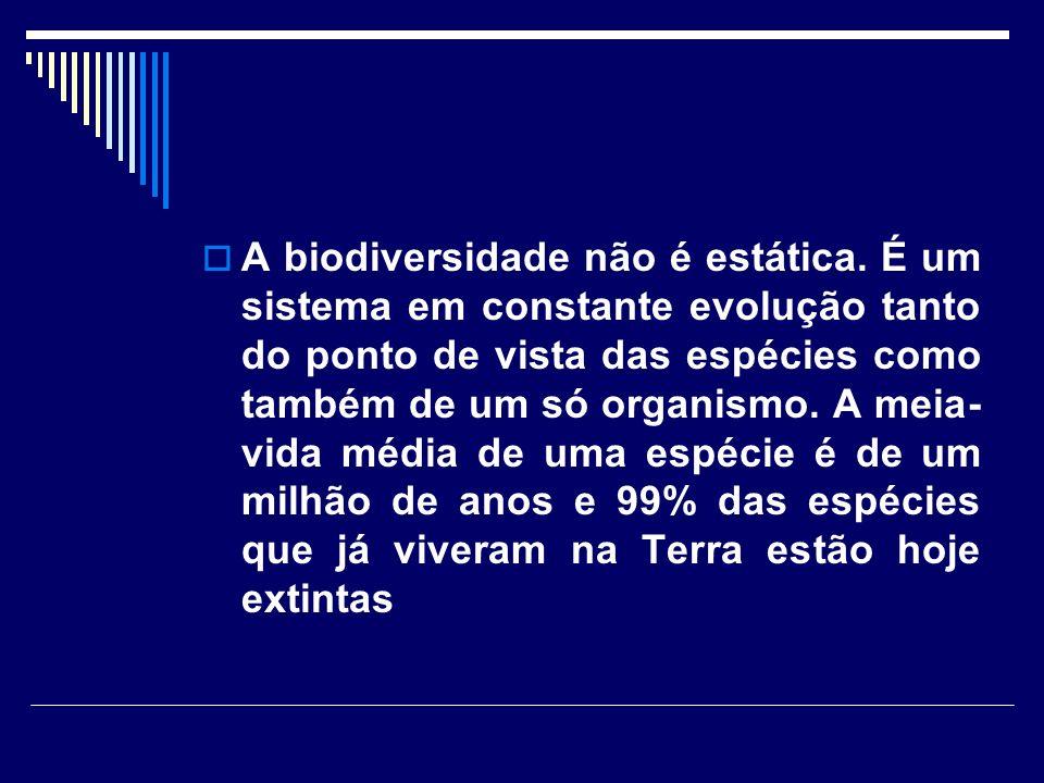 A biodiversidade não é estática. É um sistema em constante evolução tanto do ponto de vista das espécies como também de um só organismo. A meia- vida