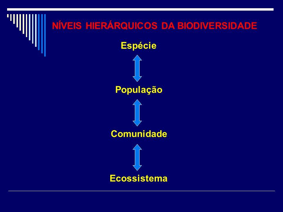 NÍVEIS HIERÁRQUICOS DA BIODIVERSIDADE Espécie Comunidade População Ecossistema