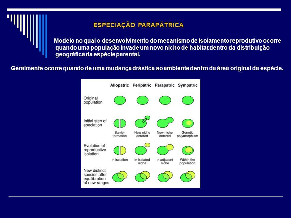 ESPECIAÇÃO PARAPÁTRICA Modelo no qual o desenvolvimento do mecanismo de isolamento reprodutivo ocorre quando uma população invade um novo nicho de hab