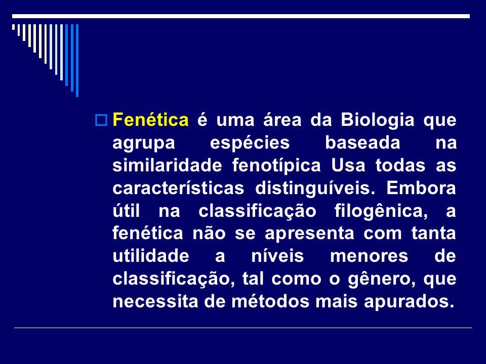 Fenética é uma área da Biologia que agrupa espécies baseada na similaridade fenotípica Usa todas as características distinguíveis. Embora útil na clas