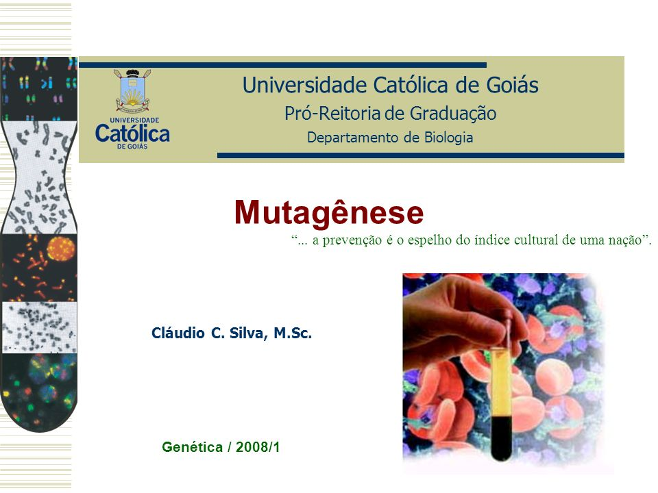 Universidade Católica de Goiás Pró-Reitoria de Graduação Departamento de Biologia Genética / 2008/1 Cláudio C. Silva, M.Sc. Mutagênese... a prevenção