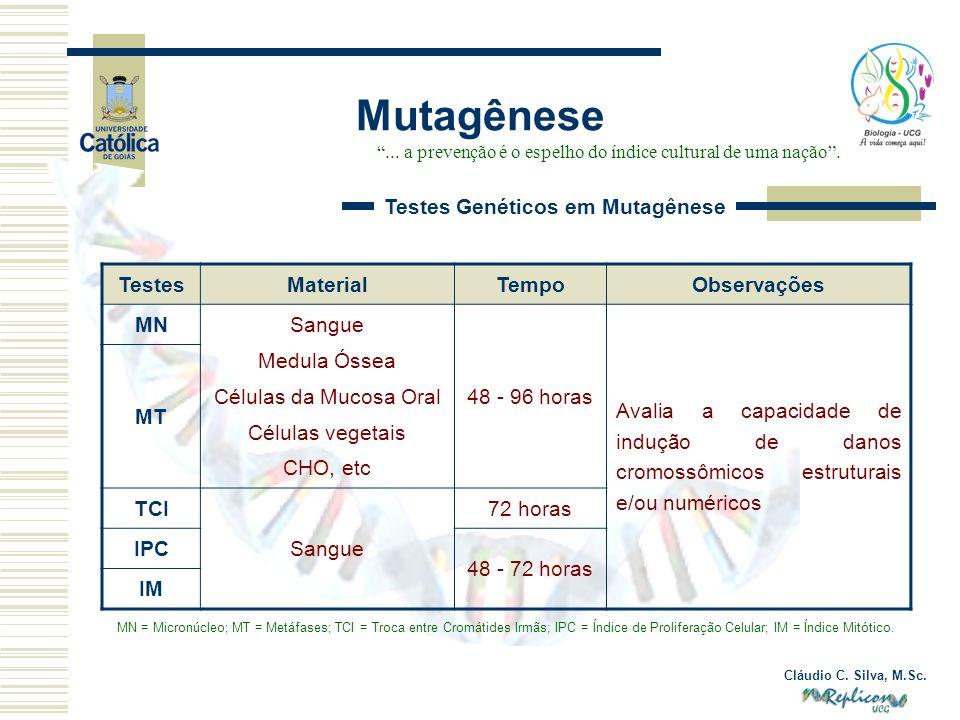 Cláudio C. Silva, M.Sc. Mutagênese... a prevenção é o espelho do índice cultural de uma nação. Testes Genéticos em Mutagênese TestesMaterialTempoObser