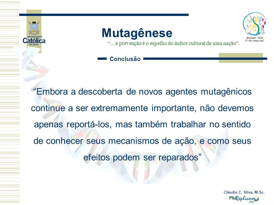 Cláudio C. Silva, M.Sc. Mutagênese... a prevenção é o espelho do índice cultural de uma nação. Conclusão Embora a descoberta de novos agentes mutagêni