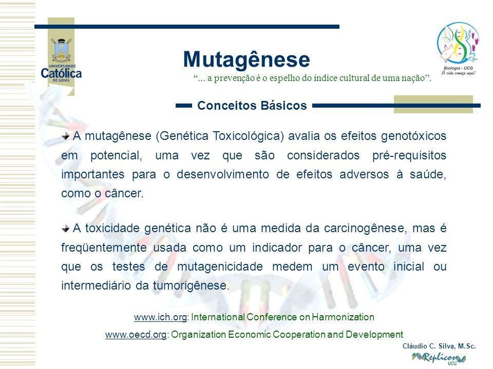 Cláudio C. Silva, M.Sc. Mutagênese... a prevenção é o espelho do índice cultural de uma nação. Conceitos Básicos A mutagênese (Genética Toxicológica)