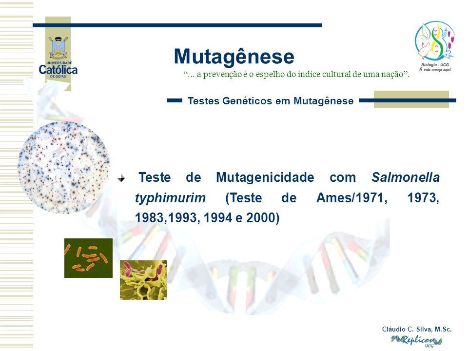 Cláudio C. Silva, M.Sc. Mutagênese... a prevenção é o espelho do índice cultural de uma nação. Teste de Mutagenicidade com Salmonella typhimurim (Test