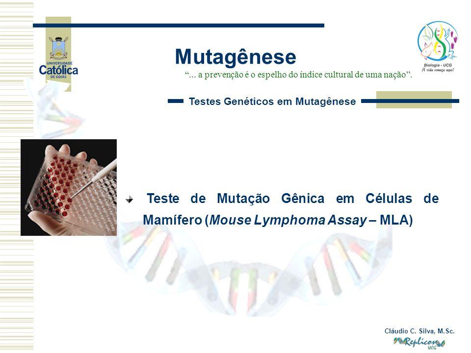 Cláudio C. Silva, M.Sc. Mutagênese... a prevenção é o espelho do índice cultural de uma nação. Testes Genéticos em Mutagênese Teste de Mutação Gênica