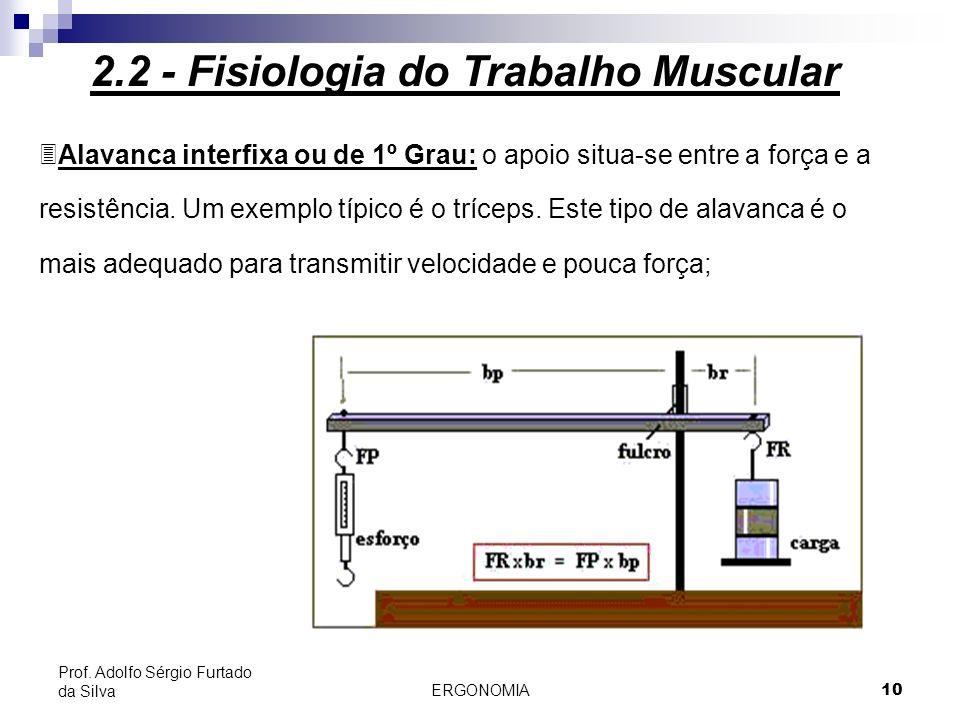 ERGONOMIA 10 Prof. Adolfo Sérgio Furtado da Silva 3Alavanca interfixa ou de 1º Grau: o apoio situa-se entre a força e a resistência. Um exemplo típico