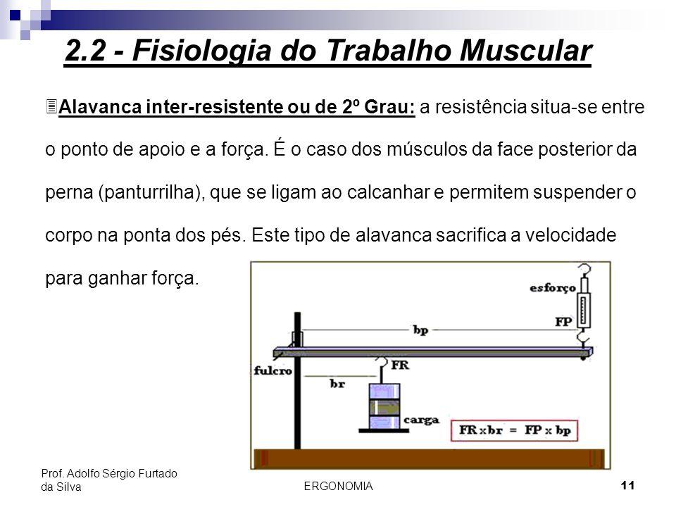 ERGONOMIA 11 Prof. Adolfo Sérgio Furtado da Silva 3Alavanca inter-resistente ou de 2º Grau: a resistência situa-se entre o ponto de apoio e a força. É