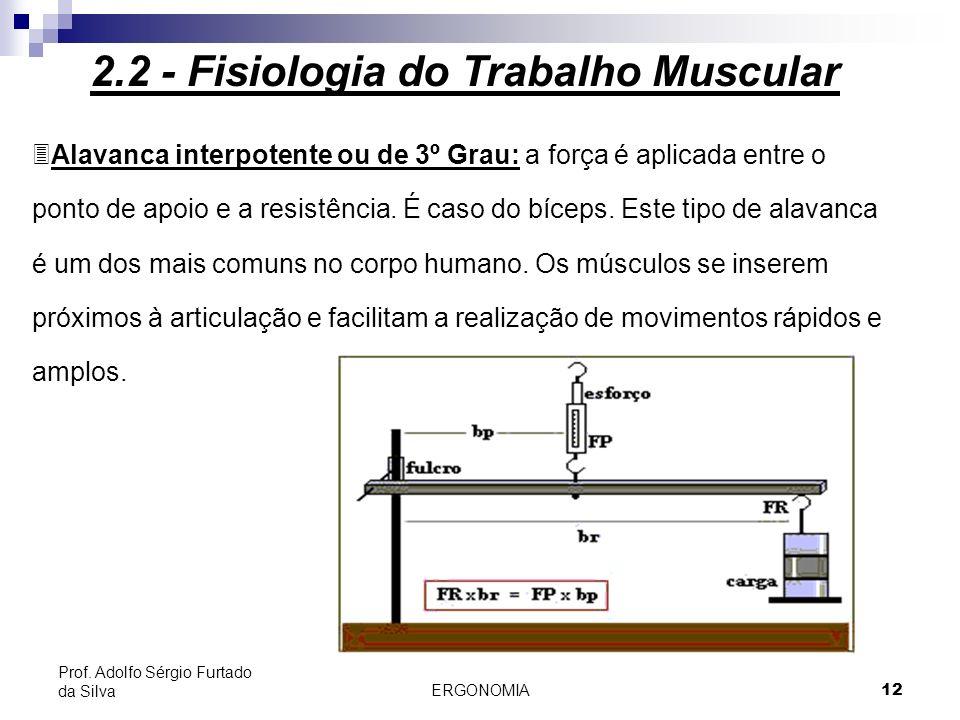 ERGONOMIA 12 Prof. Adolfo Sérgio Furtado da Silva 3Alavanca interpotente ou de 3º Grau: a força é aplicada entre o ponto de apoio e a resistência. É c