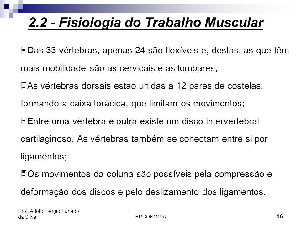 ERGONOMIA 16 Prof. Adolfo Sérgio Furtado da Silva 3Das 33 vértebras, apenas 24 são flexíveis e, destas, as que têm mais mobilidade são as cervicais e