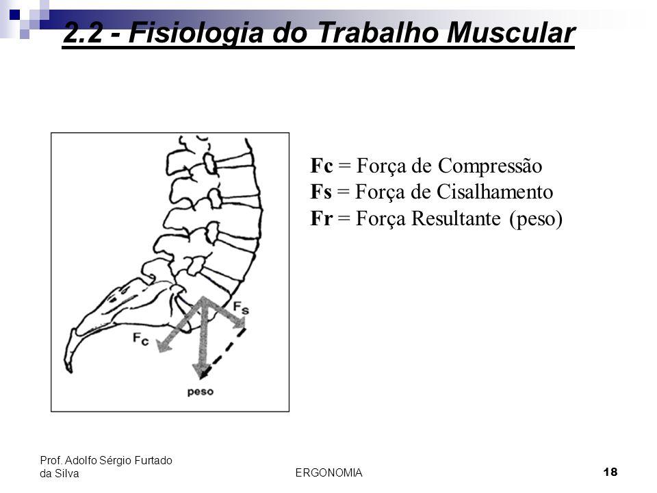 ERGONOMIA 18 Prof. Adolfo Sérgio Furtado da Silva 2.2 - Fisiologia do Trabalho Muscular Fc = Força de Compressão Fs = Força de Cisalhamento Fr = Força