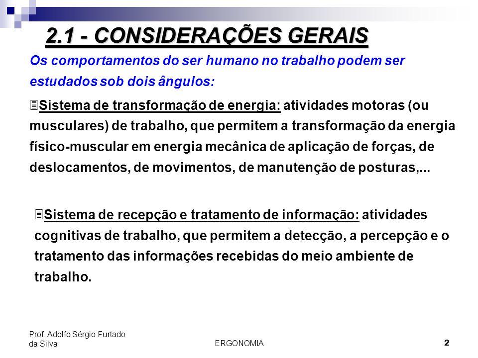 ERGONOMIA 13 Prof. Adolfo Sérgio Furtado da Silva 2.2 - Fisiologia do Trabalho Muscular